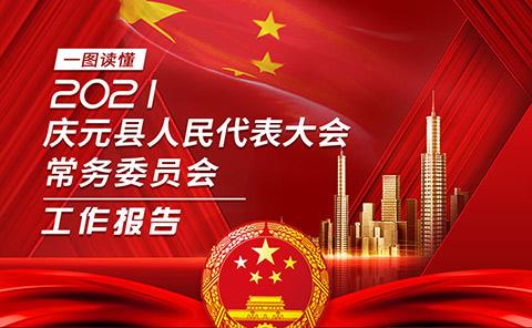 划重点!一图速览庆元县人大常委会工作报告!