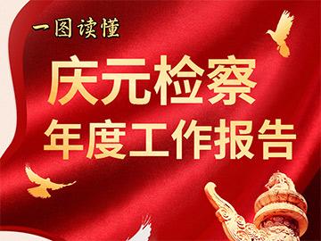 一图速览庆元县人民检察院工作报告