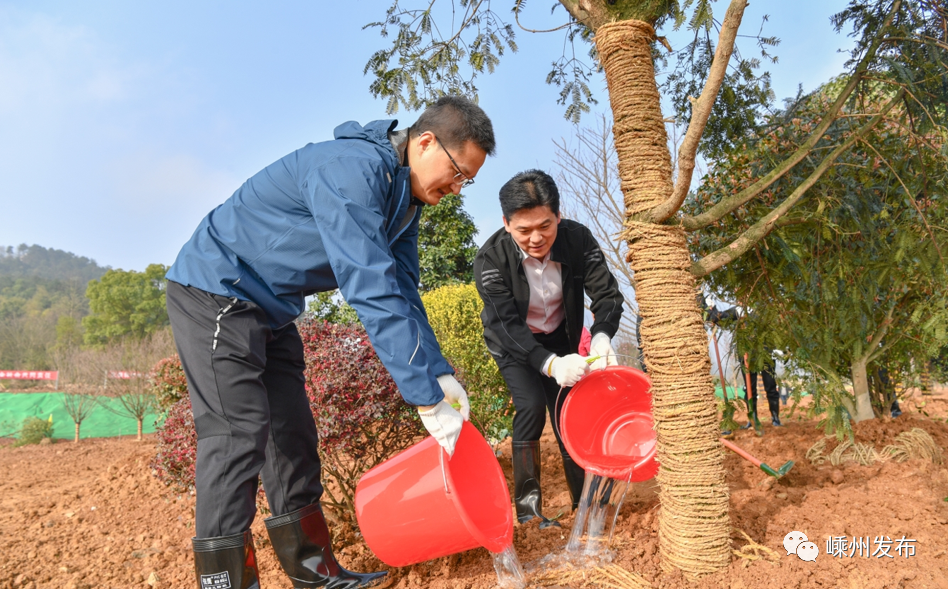 市领导与干部群众一起参加义务植树活动