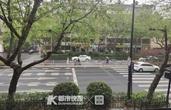 冲上热搜的Z形斑马线杭州有400多条 效果怎么样?