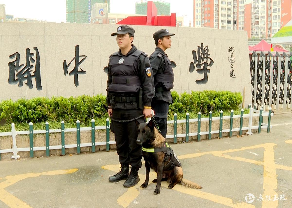特殊的安保团队――警犬是怎样炼成的