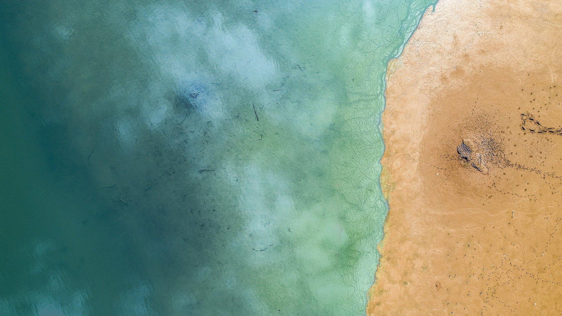 放射性污染成海洋之痛