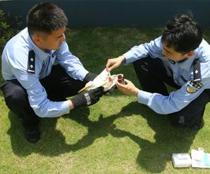 民警及时救助国家二级重点保护动物白鹭