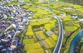 杭州乡村建设的破与立