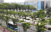 你留意过宁波这座文明城市的美好瞬间吗?