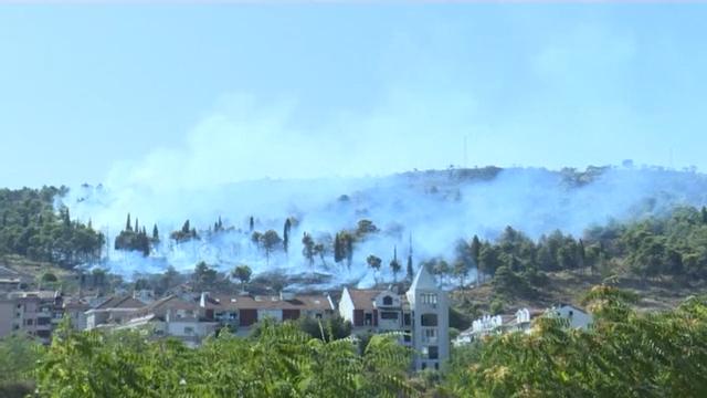 地中海沿岸多国山火蔓延 已致6人死亡
