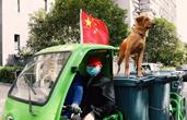 彼此守候:一条狗,一个阿尔茨海默症爸爸,一辆垃圾清运车