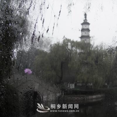 崇福中山公园