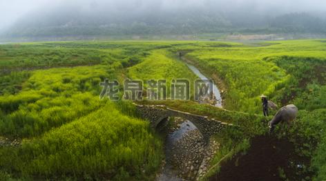 道太乡加强对仙宫湖库岸环境整治
