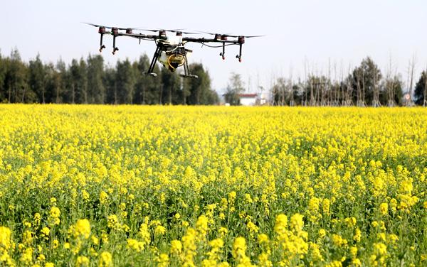 现代科技助推观光农业更精彩