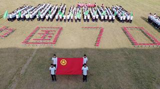 团县委组织开展特别主题团日活动